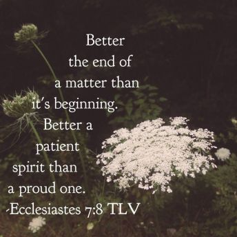 ecclesistes 7 vs 8