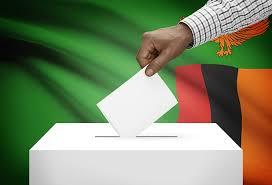 Fixing the Zambian constitution to avoid expensive by-elections